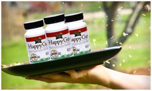 Happy-Gut-Bottles-Frame (1)