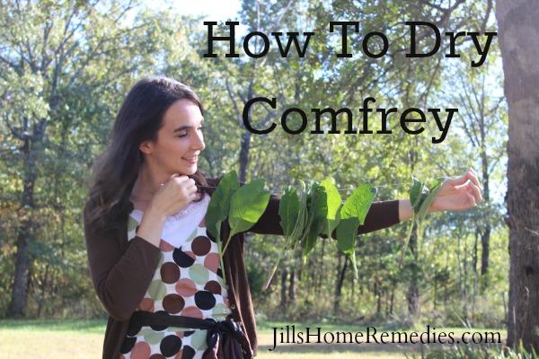 Dry Comfrey