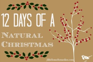 Natural Christmas3