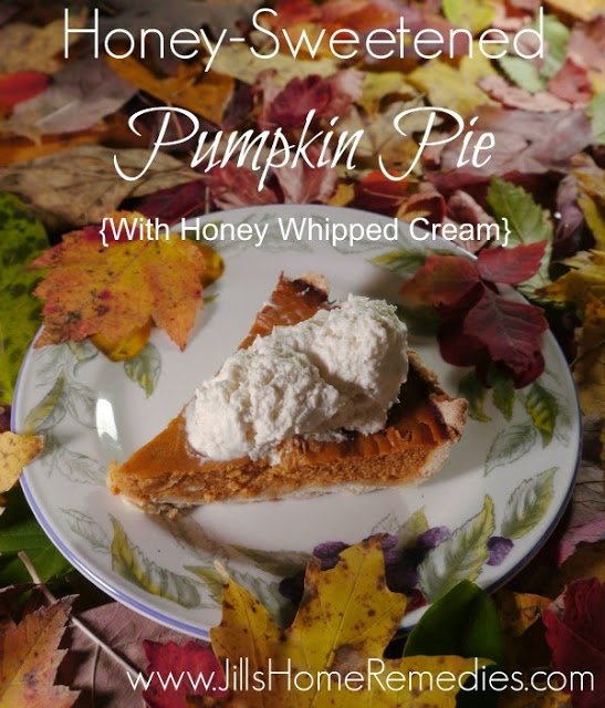 pumpkin pie (1)