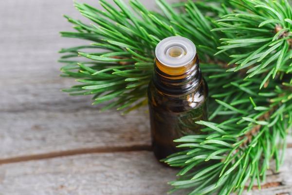 christmas eo - Christmas Essential Oils
