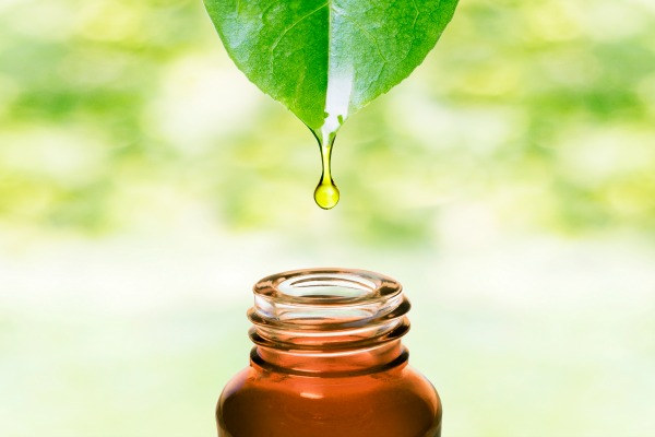 How To Use Essential Oils Without Breaking The Bank   Jill's Home Remedies   You can save money on essential oils without compromising on the quality. Learn how to use essential oils without breaking the bank!