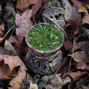 alfalfa-herb-2016_1