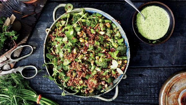 Did you know quinoa is a complete protein food and assists in weight loss? Here's 10 creative ways to use quinoa for your family's good health!