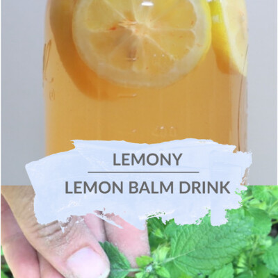 Lemony Lemon Balm Drink