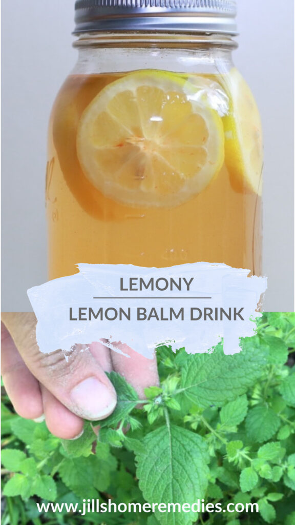 This lemony lemon balm drink is absolutely refreshing and delicious on a hot, humid day!