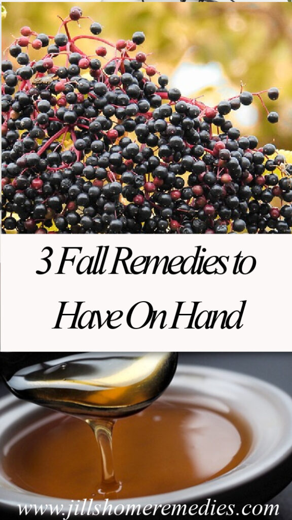 Here are 3 favorite DIY home remedy recipes that I try to have on hand for the fall and winter months.